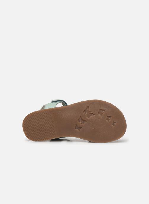 Sandalen Kickers Dyastar grün ansicht von oben