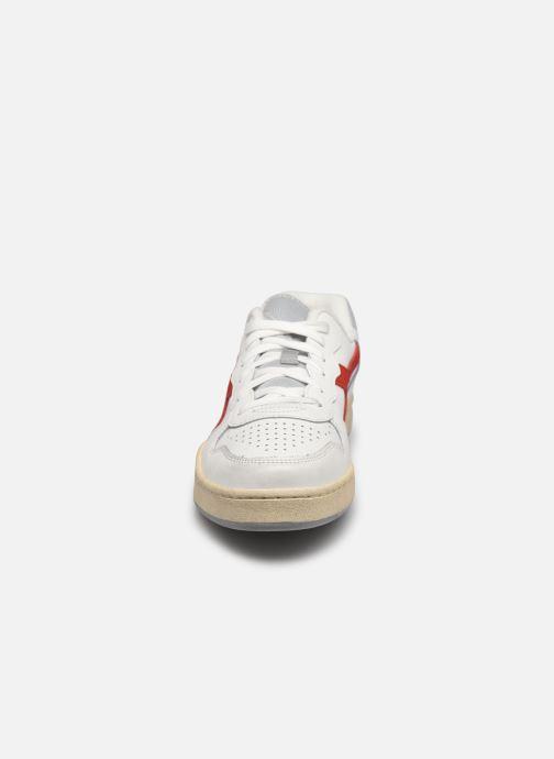 Baskets Diadora Mi Basket Low Icona Blanc vue portées chaussures
