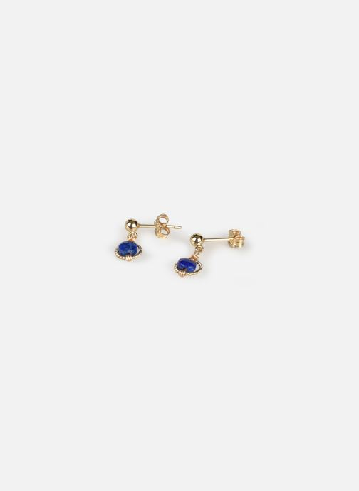 Divers Accessoires Boucle d'oreilles swan Rond or jaune bleu paire