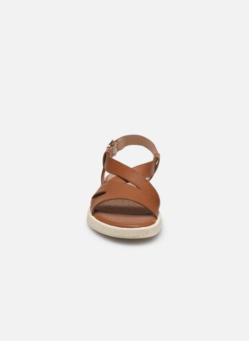 Sandali e scarpe aperte Geox D TAORMINA Marrone modello indossato