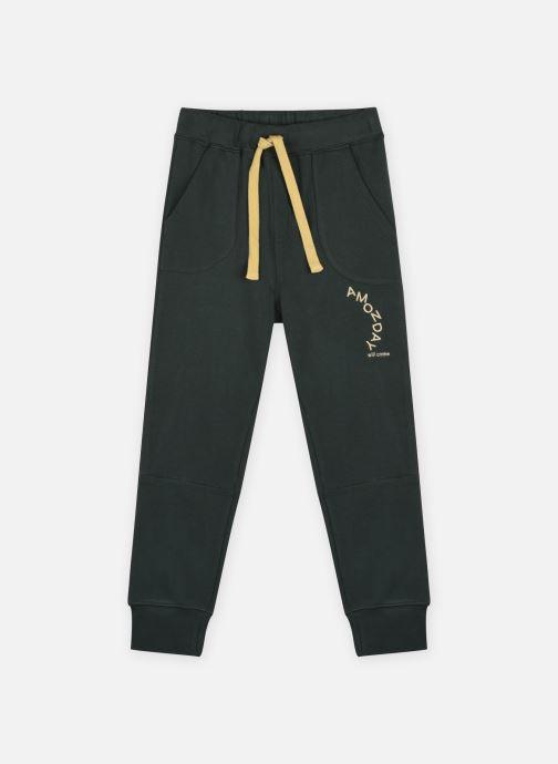Vêtements Accessoires Sigurd Pants