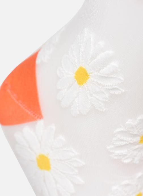 Calze e collant BLEUFORÊT Socquettes marguerite Arancione modello indossato