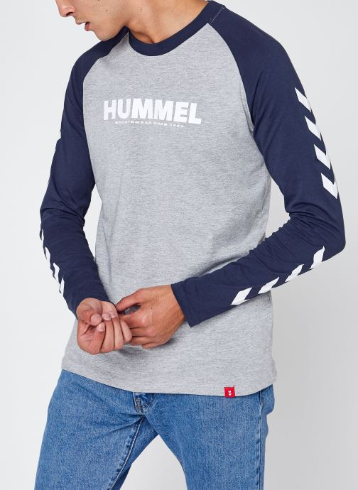 Vêtements Accessoires Hmllegacy Blocked T-Shirt L/S