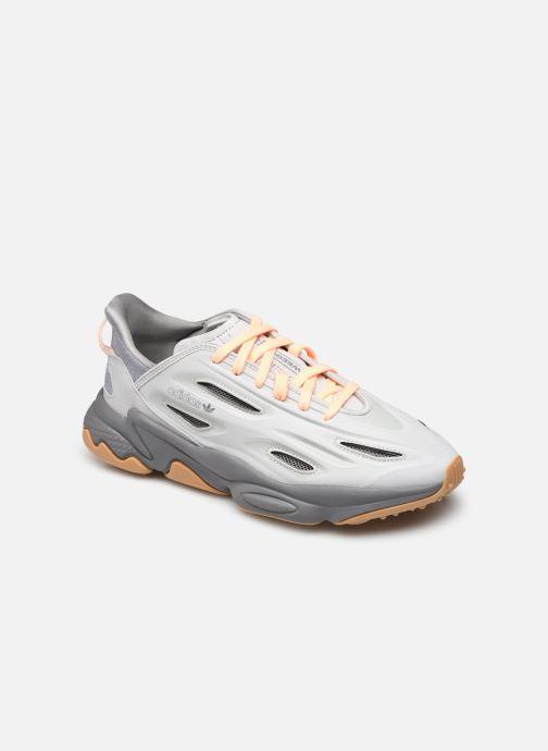 Sneakers Uomo Ozweego Celox