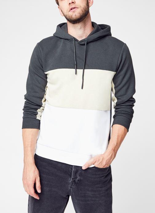 Vêtements Accessoires Onsflin Life Reg Colorblock Hoodie Sweat