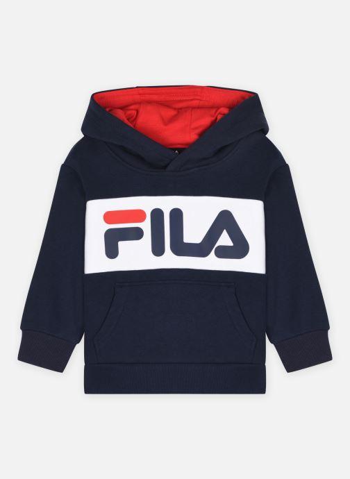Vêtements FILA Kids Ben Logo Hoody Bleu vue détail/paire