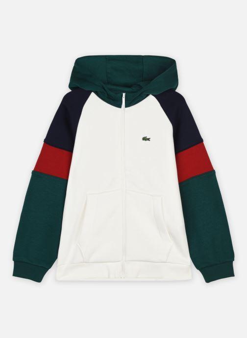 Kleding Lacoste Sweatshirt Coloré Lacoste Enfant Wit detail