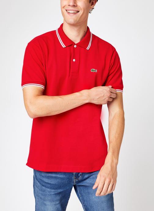 Abbigliamento Accessori Polo Droit PH2384 Manches Courtes
