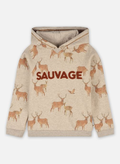 Vêtements Accessoires Sweatshirt Albel