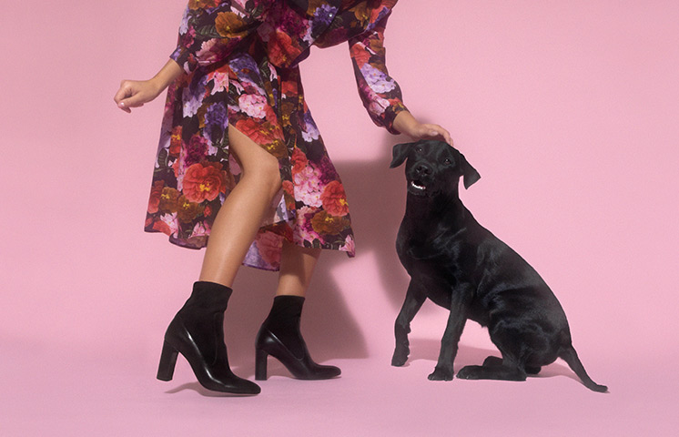 Boots chaussettes pour femme